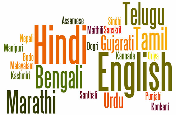 Image result for india languages
